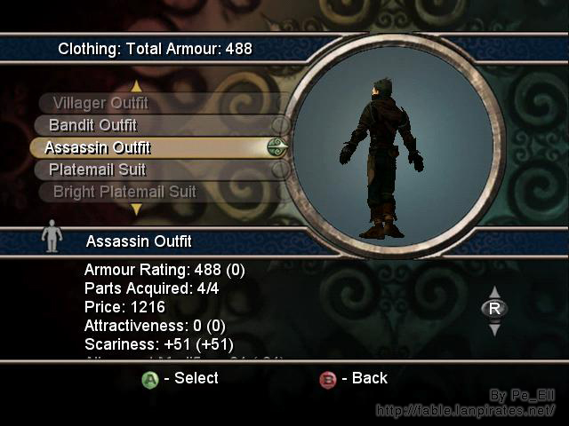 Assassin Outfit Back